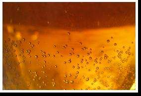 Beer/blonde